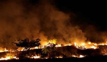 Fuego en la Amazonía brasileña. Foto: Reuters.